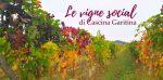 Cascina Garitina e Gianluca, il vignaiolo più social d'Italia