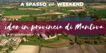 Idee per una gita in provincia di Mantova (con aree di sosta camper)